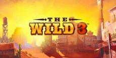 The Wild 3